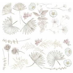 -Bring a calming element of the desert into your space with these generously sized DIY peel-and-stick palm and floral decals rendered in soft, neutral hues. Simply peel off the backing, stick to a smooth surface and readjust until all the rustic foliage aligns exactly how you like. With a strong, self-adhesive design that won't leave a sticky residue, it's an effortless way to transform any bathroom, bedroom or living space wall.  Color:Multi. Also could be used for decorative,accessories,wall d Modern Wall Decals, Vinyl Wall Decals, Watercolor Walls, Watercolor Leaves, Roommate Decor, Roommates, Desert Sun, Wall Backdrops, Purple Lilac