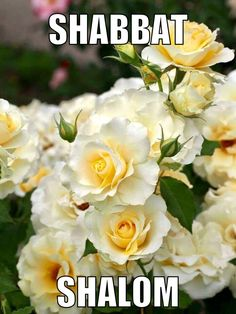 Bon Sabbat, Menachem Begin, Happy Sabbath Quotes, 4th Commandment, Israel, Sabbath Day Holy, Shabbat Shalom Images, Good Shabbos, Shavua Tov