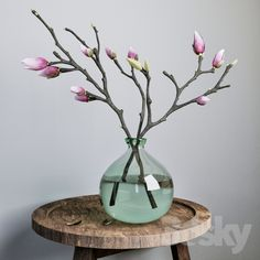 Branches of Magnolia (Magnolia)- Ветки магнолии (Magnolia) Branches of Magnolia (Magnolia) - Home Flower Arrangements, Beautiful Flower Arrangements, Flower Vases, Beautiful Flowers, Deco Floral, Arte Floral, Arreglos Ikebana, Magnolia Branch, Home And Deco