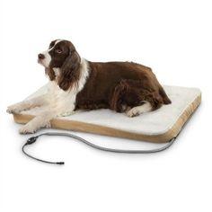 Tips on Buying Heated Pet Beds #HeatedPetBeds #PetBeds #Tips