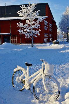 Bike In Front Of Barn