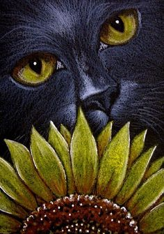 Thumbnails of Exhibit Entries by Cyra R. Cancel Page 1 of 3 Crazy Cat Lady, Crazy Cats, Black Cat Art, Black Cats, Gatos Cats, Cat Quilt, Cat Photography, Cat Drawing, Cats And Kittens