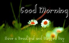 #goodmorning #thursdaymotivation #ThursdayThoughts #thursday #happythursday #thursdaymorning #thursdaywisdom #GoodMorningWorld