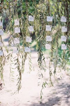 Take advantage of the natural setting, and dangle your escort cards from nearby tree. - HarpersBAZAAR.com