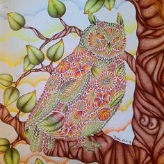 Milliemarotta Animalkingdom Coloringbook Coloring Coloredpencils Maped Drawing Owl Adultcoloring Adultcoloringbook Arttherapy Colorindolivrostop