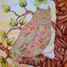 #sessaocoruja #Top hoje! #boanoite #goodnight #bonnanuit #buenasnoches #bonsonhos  #EzRepost @coloring_adventure with @ezrepostapp  I just loved coloring this!  #milliemarotta #animalkingdom #coloringbook #coloring #coloredpencils #maped #drawing #owl #adultcoloring #adultcoloringbook #arttherapy #colorindolivrostop #colorful #livros_coloridos #desenhoscolorir #ColoringMasterpiece #colorirlove