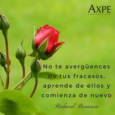 #Frases #Motivación #Éxito