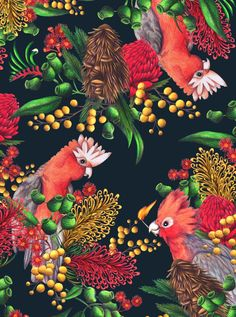 Hand-drawn galah print for Mambo by Edwina Buckley.Get the colours here: http://www.plascon.co.za/