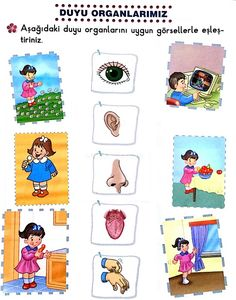 5 duyu Senses Activities, Science Activities, Educational Activities, Activities For Kids, Five Senses Worksheet, Body Preschool, Science Writing, Learning Websites, Kids Library