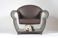 If you find a chair like this, put it on Pickselly :D Probably all the dog and cat lovers would happily get this!