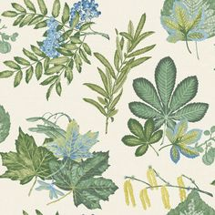 Mulberry L x W Floral and Botanical Roll Wallpaper Holden Decor Colour: Burnt Orange/Taupe Botanical Wallpaper, Rose Wallpaper, Wallpaper Roll, Wall Wallpaper, Nature Wallpaper, Embossed Wallpaper, Wallpaper Panels, Black And White Wallpaper, Blue Wallpapers