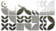Noted: New Logo and Identity for Community Farm Alliance by Bullhorn