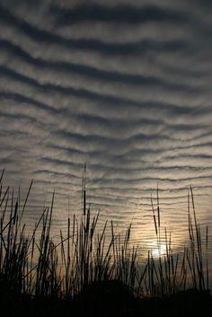 clouds, finger waves