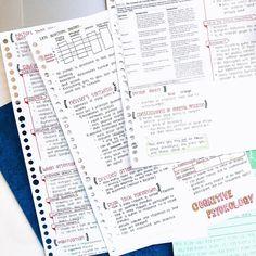 kimching232:  Feb. 5 || Day 37  #100daysofproductivity #kimching232 #studyblr #studyspo #studygram #studentlife #studymotivation #studyinspiration #psychblr #notetaking #noterevision #psychologicalstatistics #statistics #statisticsnotes #psychnotes #psychologynotes #psychologymajor #psychmajor #cognitivepsychology #cogpsychnotes #handwriting #handwritingdemo