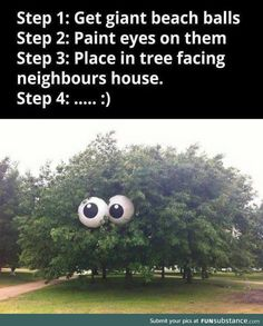Paint eyes on two 2 beach balls and play in tree facing neighbors neighbors house, prank pranks tree looking at them starting This would be a funny prank. clean fun no one gets hurt nothing damaged pranks Funny Shit, The Funny, Funny Stuff, Crazy Funny, Funny Pranks, Funny Jokes, Best Pranks, Funniest Pranks, Best Senior Pranks