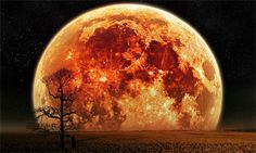 Plus proche, plus grosse, plus lumineuse: la pleine Lune sera, le 14 novembre au soir, la vedette de la voûte céleste, offrant un spectacle inédit depuis p