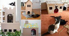 7 Modelos Incríveis de Casinhas de Papelão Para Gatos
