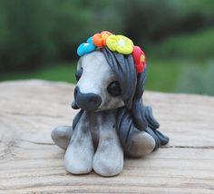 Amira Wee pony - 2016