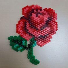 Rose hama mini beads by ganavec