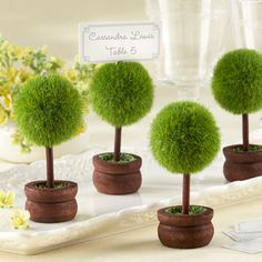 Topiary Placeholders $12