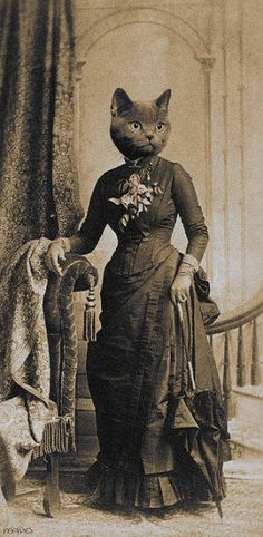 "Lady Pawsington-Tunasalad, of the Buckinghamshire Tunasalads. Known for her sharp wit and social commentary and an often-troubled personal life, she was also the foremost female leader in early infrared indicator technology. Her treatise ""WE MUST CAPTURE THE RED DOT"" is considered one of the most important documents in hyperoptic history."