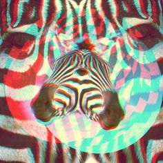 Brock Lefferts' psychedelic graphics project