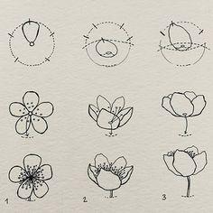 Love this cherry blossom - sakura doodles by . Flower Drawing Tutorials, Flower Line Drawings, Art Tutorials, Drawing Lessons, Drawing Techniques, Doodle Drawings, Doodle Art, Cherry Blossom Drawing, Nature Sketch