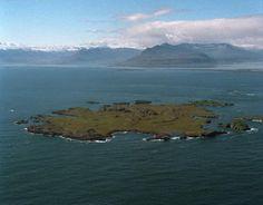 Papey Island, Iceland
