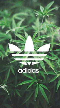 Adidas Weed Wallpaper Hd Larmoriccom