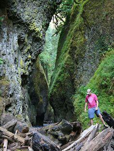 Top 10 Scenic Hikes Near Portland