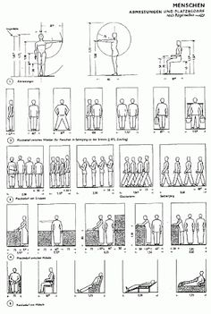 anthropometric dimensions of the human body pdf