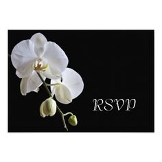 See MoreOrchid on Black Wedding RSVP Response Card InvitationThis site is will advise you where to buy