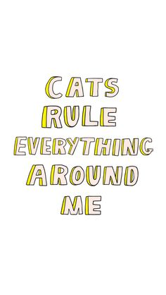 Happy Caturday! It's National Cat Day!