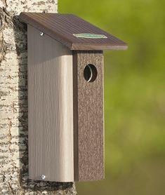 Downy Woodpecker Bird House - Male and female Downy Woodpeckers may take up to… Modern Birdhouses, Downy Woodpecker, Bird House Kits, Garden Animals, Bird Aviary, Bird Boxes, Backyard Birds, Wild Birds, Bird Watching