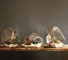 New irregular geometric terrariums. Sculptural planters for modern, minimalist or traditional interior design styles.  Home decor from Nightshade Studio