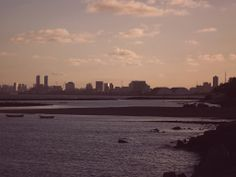 Prédios de Recife.