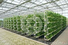 Hydroponic greenhouse design plans, rubbermaid 7 x 7 shed, free ... #hydroponicsdecor