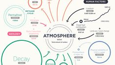 Audubon - Carbon Cycle Infographic