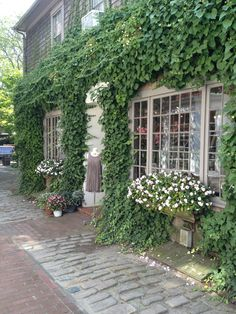 Would love a country store enveloped with natural foliage