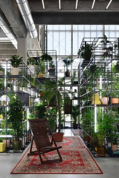 New York-based artist Rashid Johnson presents colliding cultures in Moscow with a tropical conceptual art installation. Japan Design, Bühnen Design, Cafe Design, Indoor Garden, Indoor Plants, Vegetal Concept, Rashid Johnson, Cafe Interior, Green Plants