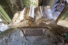 Found by untappedcities.com on abandoned North Brother Island in New York City.