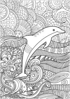 Die 106 Besten Bilder Von Delfin In 2020 Malvorlagen Tiere