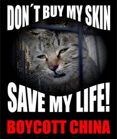 "The Chinese ""culture"" makes me sick. They torture Animals so the meat gets adrenalized for their hoo-doo Chinese bull-shit. I am all about freedom, until you go twisted with it. You torture Animals, you are a fucking piece of shit to me. These Chinese skin Doggies and Kitty-Cats, and that is the fur that lines your ""Made in China"" coat, boots. Your Chinese-made shoes? That isn't cow-leather. Look, just do right. It is the DUTY of decent people to oppose abuse and cruelty in all its forms."