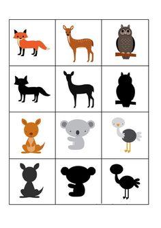 Atividades com sombras de Animais para Educação Infantil Toddler Learning Activities, Animal Activities, Montessori Activities, Science Activities, Kids Learning, Kids Zoo, Kindergarten, Animal Puzzle, Picture Cards