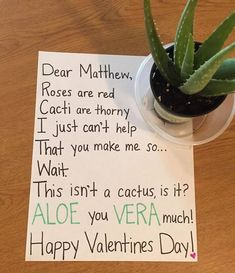 Find the perfect Valentine's Day gift! Shop Valentine's Day gifts for her, gifts for him, kid's valentines and even gifts for your Galentine. Get unique gift ideas and shop Valentine's Day favorites like chocolates, flowers, jewelry and cards. Diy Valentines Gifts For Him, Be My Valentine, Valentines Day Jokes, Funny Valentine Poems, Valentine Roses, Red Cactus, Diy Cadeau, My Sun And Stars, Practical Jokes