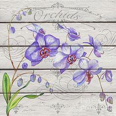 Purple Orchids-JP3924 by Jean Plout