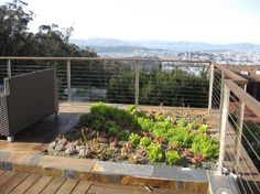 images about Roof Deck Garden on Pinterest Roof