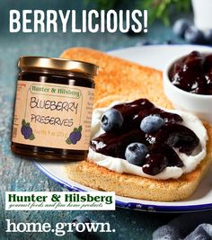 Berry preserves on toast with cream cheese = the best! Preserves, The Best, Blueberry, Berries, Cheesecake, Toast, Artisan, Cream, Desserts