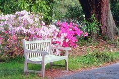 Pintar muebles de jardin - Buscar con Google