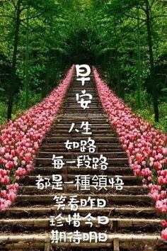 Good Morning Wishes, Good Morning Quotes, Chinese Quotes, Morning Greetings Quotes, Quotes About God, Faith Quotes, Chinese Language, Greed, Morning Wishes Quotes